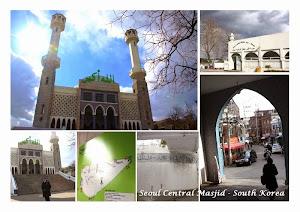 paket tour muslim korea 2014
