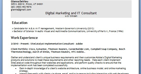 sitecatalyst implementation consultant sample resume