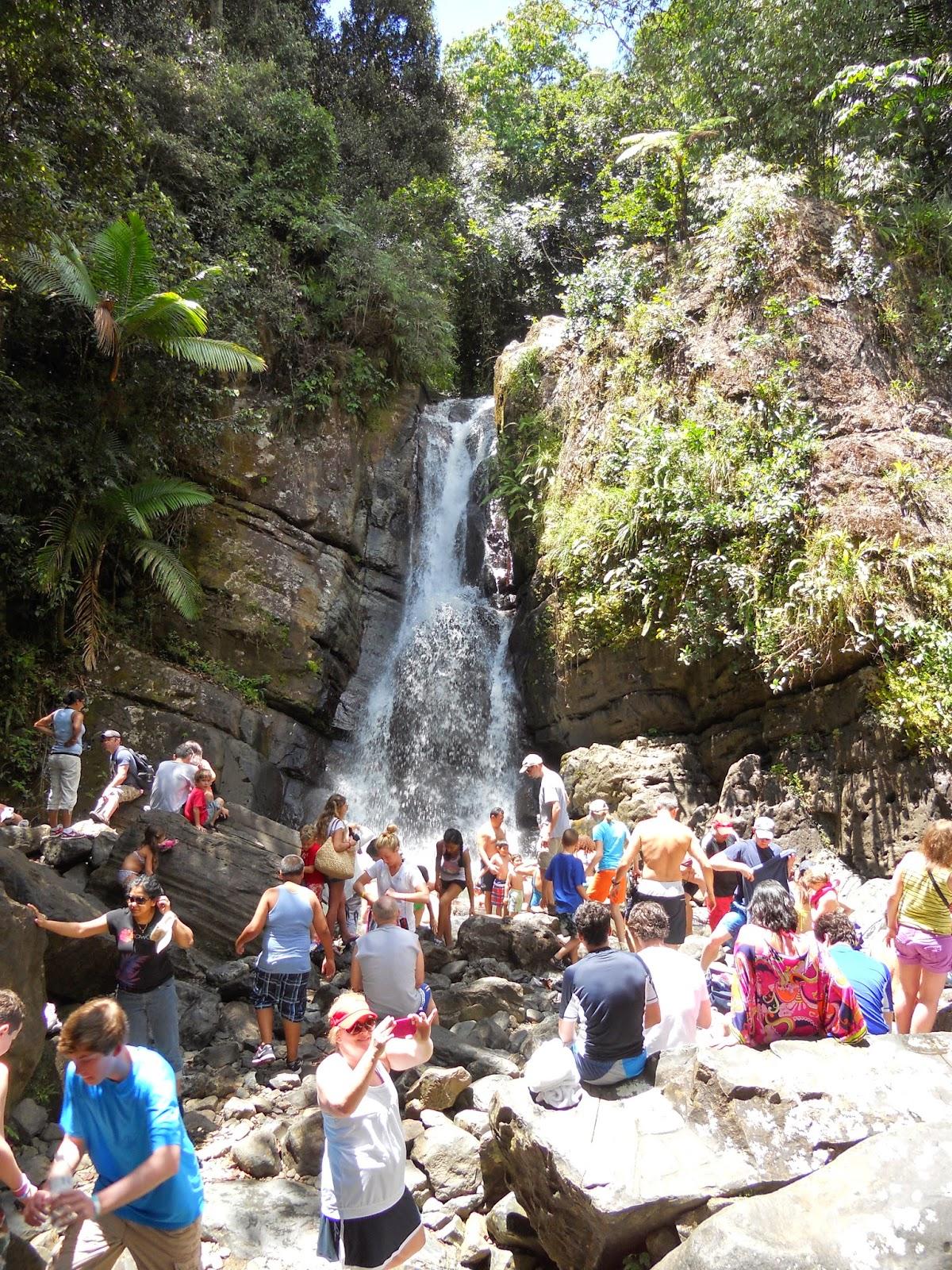 Our Big Adventure El Yunque National Forest Puerto Rico