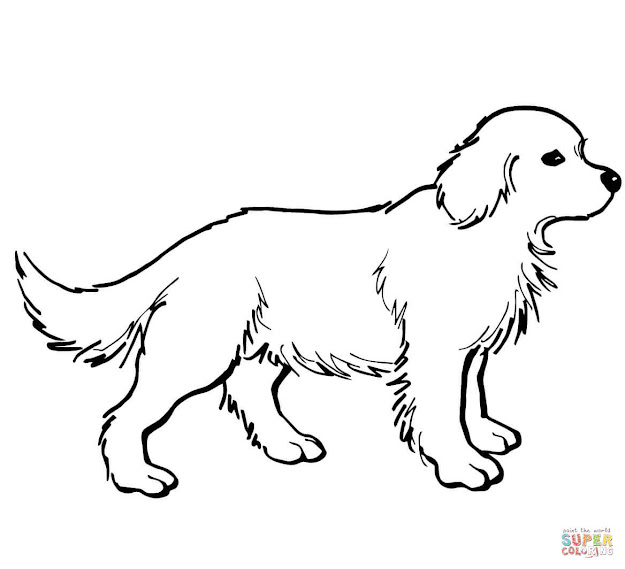 Black Lab Puppy Coloring Pages Black Download Coloring Pages Books And  Drawing