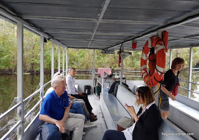 Tour pelos pântanos da Luisiana