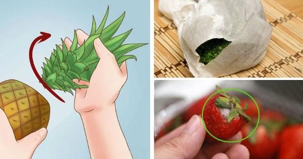 comment conserver vos fruits et l gumes frais jusqu un mois combattre pour une vie. Black Bedroom Furniture Sets. Home Design Ideas
