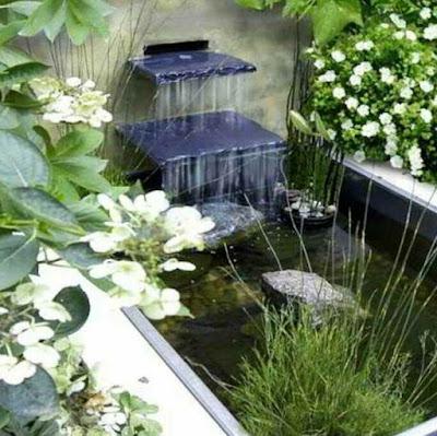 Desain kolam ikan minimalis di lahan sempit, gambar kolam ikan hias mininalis