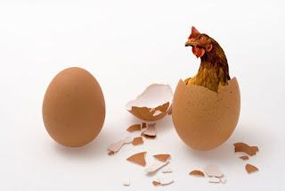 ayam telur yang lebih dahulu infinite regress