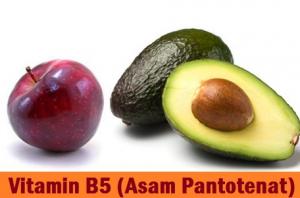 asam-pantotenat,www.healthnote25.com