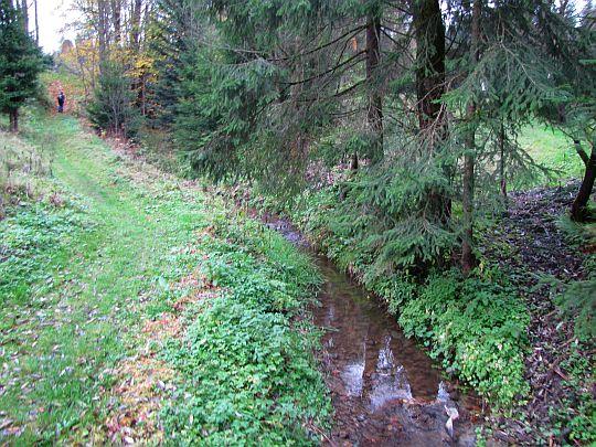 Potok Bielanka.