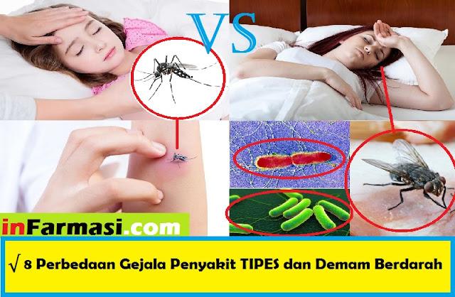 Perbedaan Gejala penyakit tipes dan demam berdarah