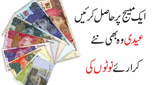 new currency notes of pakistan state bank of pakistan new currency notes new currency notes of pakistan 2017 state bank of pakistan new currency notes branches pakistan new currency notes 2017 state bank of pakistan new currency notes for eid new currency notes pakistan pakistani currency packet eid news in pakistan eid ul adha coming soon pakistan new currency notes design Results on the page: