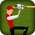 Stick Cricket - Cool Cricket Game 1