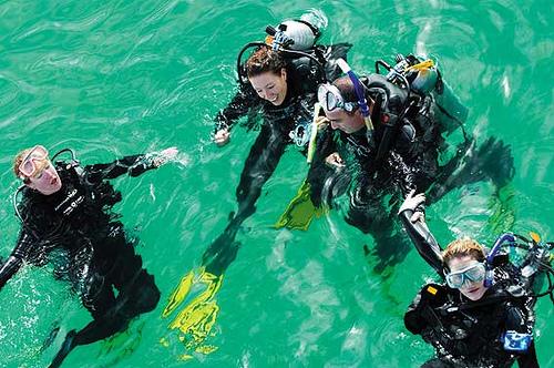 Marine Biologist Training Class