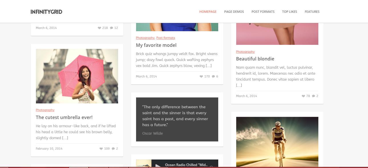 InfinityGrid -Best WordPress Grid Themes