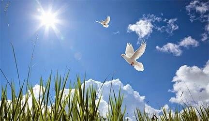 Khi Nào Trời Mới Nắng