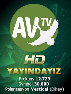 av tv frejans 2019