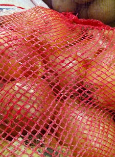 waring sayur bungkus kemasan kentang