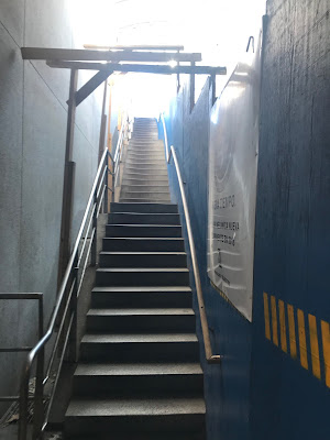 photo of a concrete stair case with wood frames over it and next to a blue contruction wall