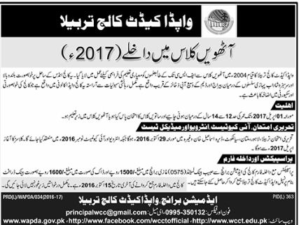 admission, Education, 8th Class Admission Open in Wapda Cadet School and College,