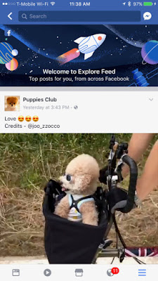 Facebook Best Posts