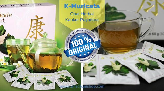 K-Muricata Obat herbal kanker payudara alami yang ampuh dan aman dan cepat dalam menumpas sel kanker payudara