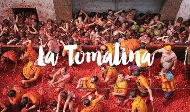 la tomatina,tomatina,la tomatina festival,spain,the tomatina,tomatina buñol,tomatina valencia,tomatina festival,la tomatina rules,la tomatina buñol,tomato,la tomatina clean up,la tomatina history,chica de la tomatina,la tomatina in india,fiesta de la tomatina,la tomatina de buñol,la tomatina official,valencia,festival,how does la tomatina start,official tour la tomatina,how long does la tomatina last