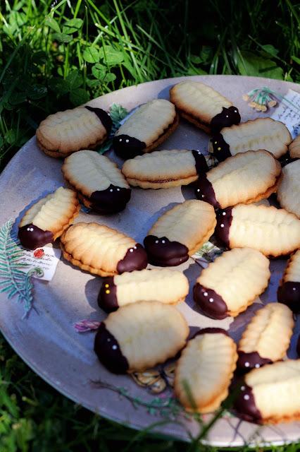 biscuits, trilobites, recettes, français, trilobite-cookies,George W. Hart, photo-emmanuelle-ricard
