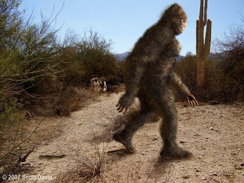 Cryptid Experts Weigh In on Bigfoot Hunting Season in Oklahoma Bigfoot-in-arizona-the-howler