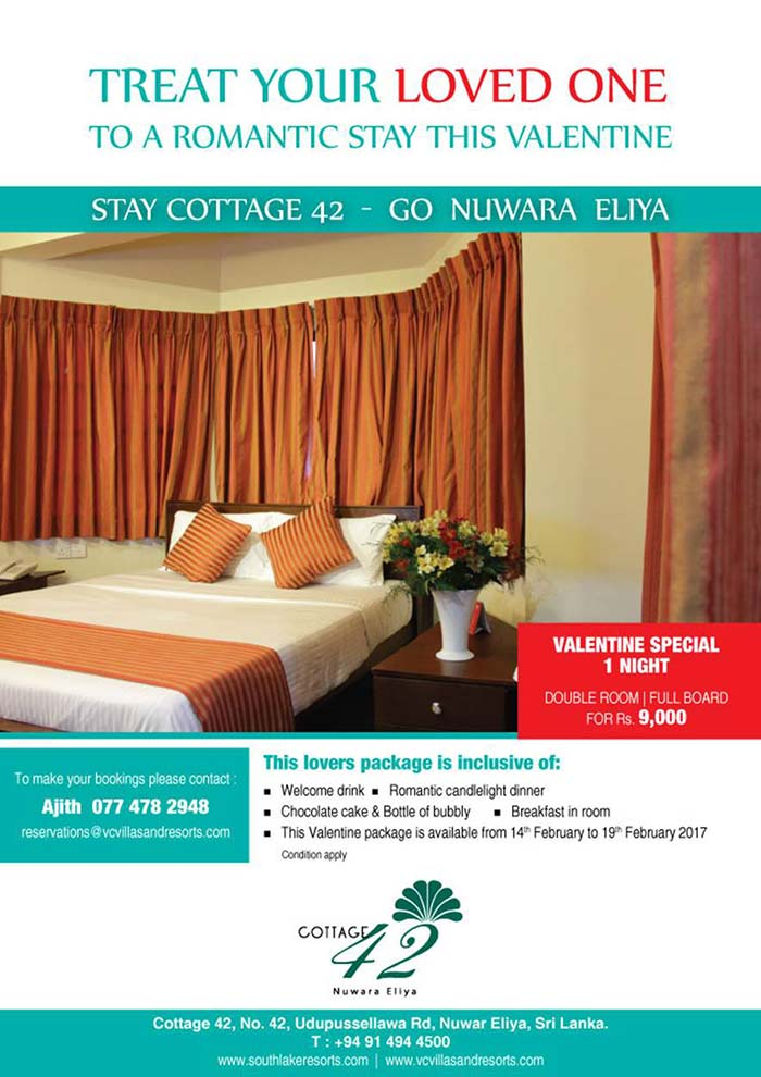 Cottage 42 | Treat your Loved One to a Romantic stay this Valentine at Nuwara Eliya