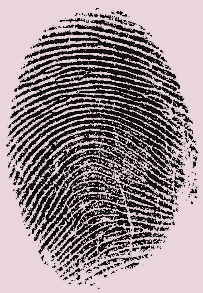 a large old fingerprint image