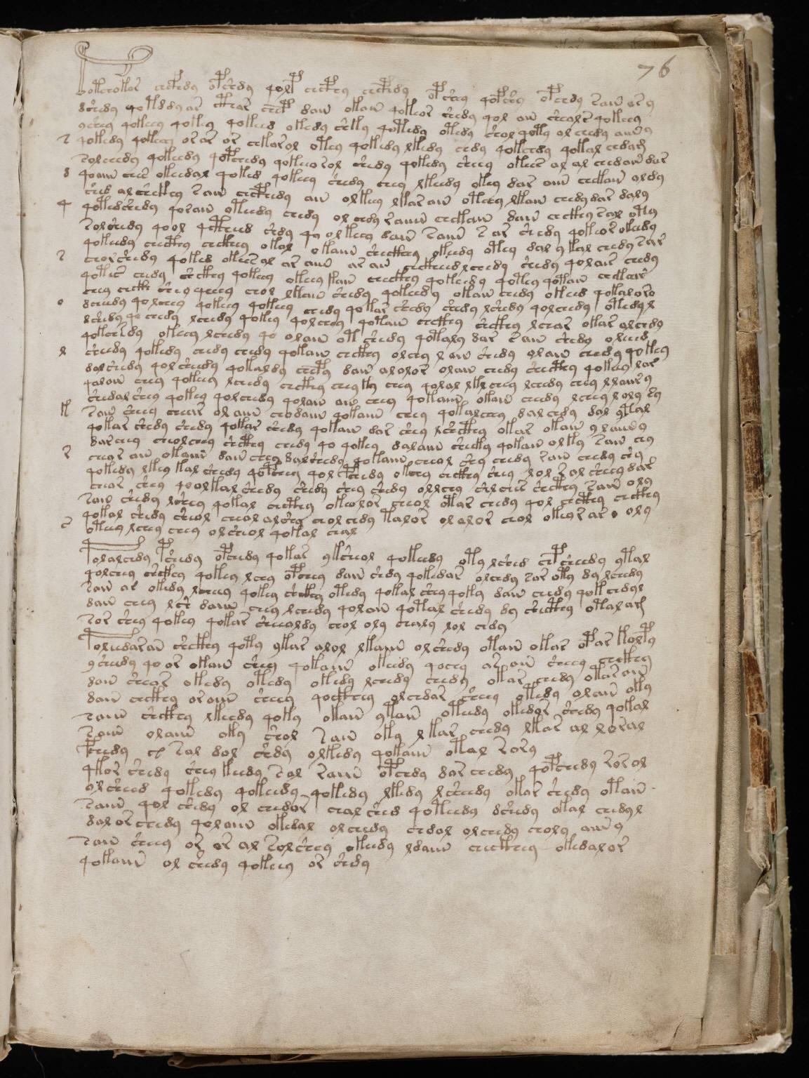 manuscrito135