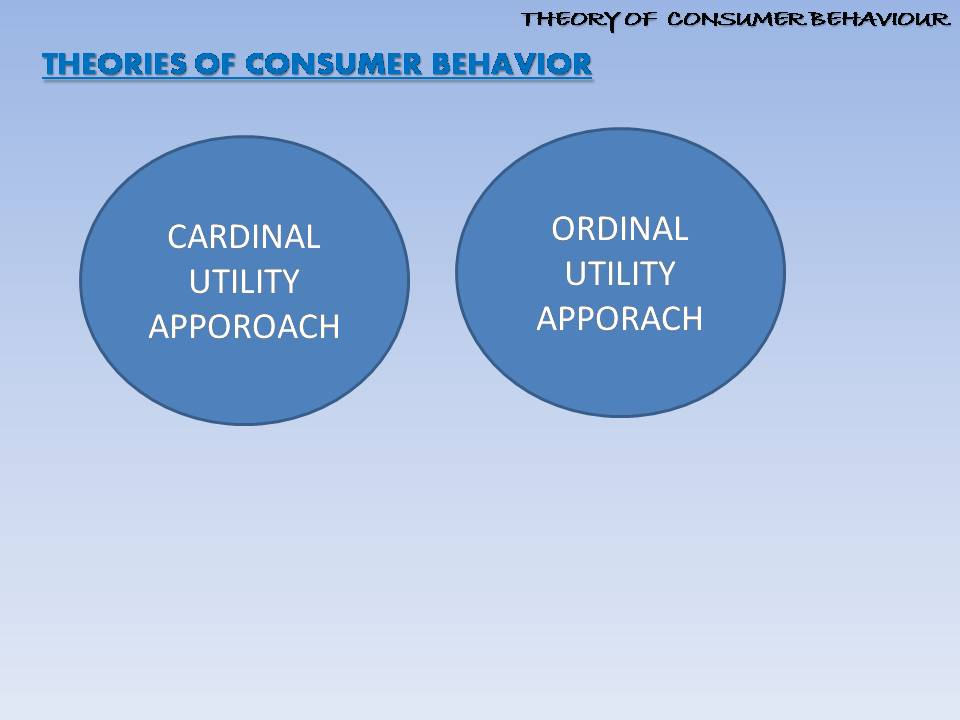 major theories of consumer behavior and 10 of 33  psychological and marketing influences on consumer choice into a coherent sequence of information processing (foxall 1990 p12: cognitive consumer behaviour models cognitive consumer behaviour models analytic prescriptive consumer decision model theory of buyer behaviour theory of reasoned action theory of planned behaviour.