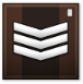 Master Sergeant Grade 1 Point Blank