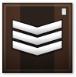 Master Sergeant Grade 1 Point Blank