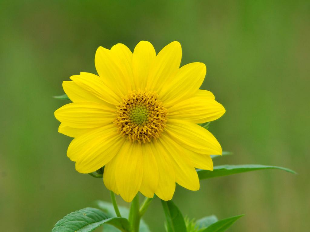 Beauty is everywhere. Lepota je svuda...: Poucne price kojih se rado sjetim u razlicitim ...