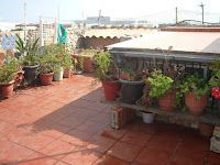casa en venta calle san enric villarreal terraza2