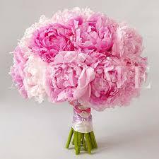 carnation buket bunga kayon surabaya1