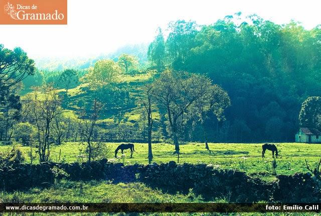 Descubra a simplicidade no passeio Rural Linha Bella