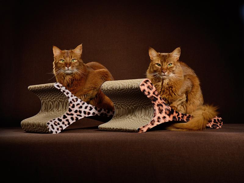 sch ne kratzm bel aus wellpappe jetzt g nstiger design kratzb ume und m bel f r katzen. Black Bedroom Furniture Sets. Home Design Ideas