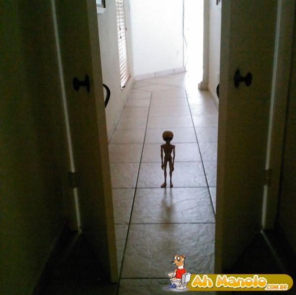 Acordou de madrugada e viu isso na sala...