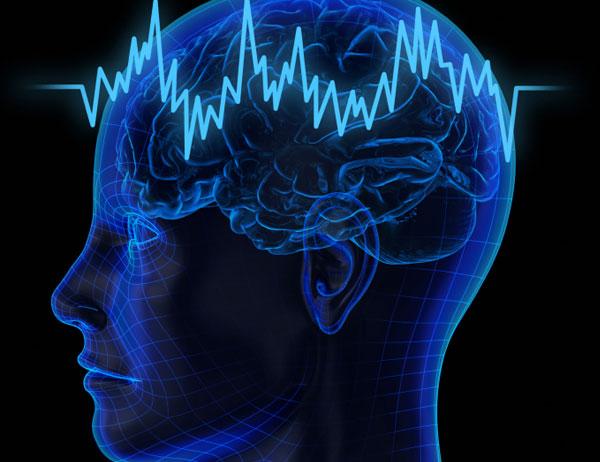 Nuestro cerebro esconde algunos mitos