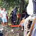Itabela – Motorista de caminhão morre em acidente na BR-101