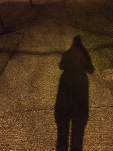 Silhouette of a girl on the path. Made by a lamppost street light during the night.