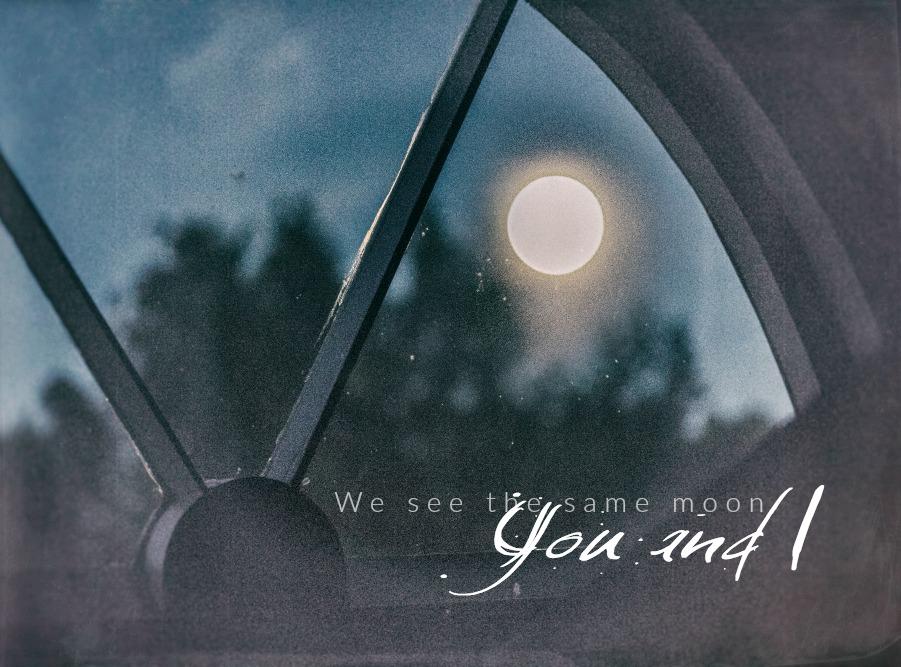 kuu, moon, quote, mietelause, valokuvaus, valokuvaaminen, Frida Steiner, Visualaddict, yö, ilta