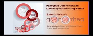 Solusi Terbaik untuk Kencing Nanah Anjuran Dokter Agar Cepat Sembuh