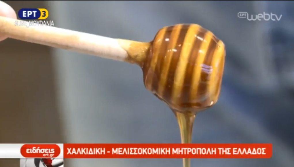 Η μελισσοκομία ανθεί στη Χαλκιδική (video)