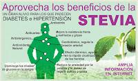 http://steviaven.blogspot.com/2016/02/stevia-rebaudiana.html