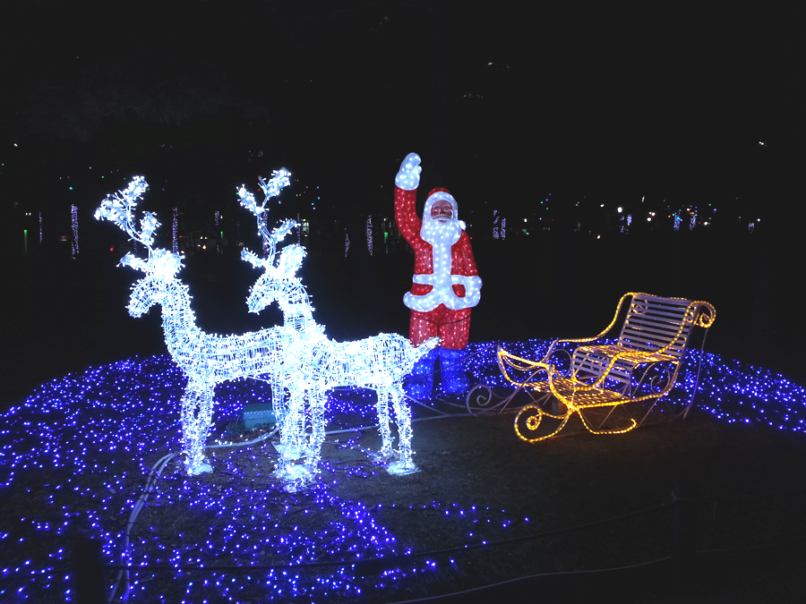 Christmas Light Displays.Fun Free Daegu Travel Places To See Christmas Light