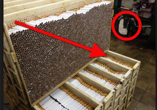 Astagfirullah… Ngerinya !!! Rahasia Pabrik Rokok Ini Bisa Bikin Kamu Berhenti Merokok Saat Ini Juga!