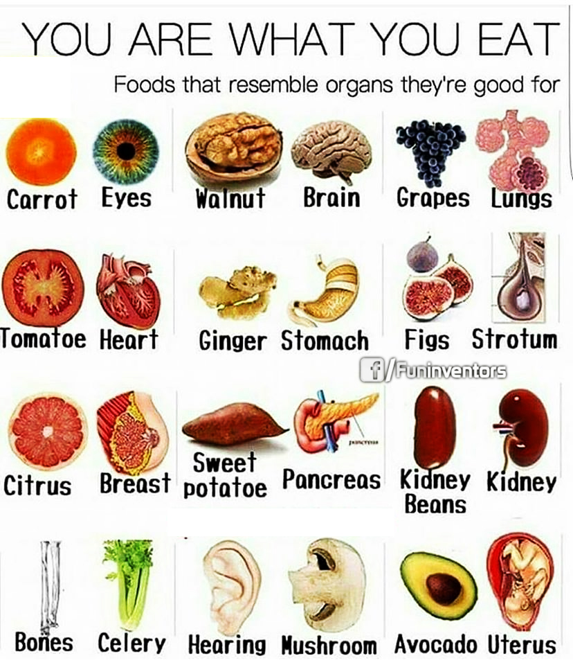 You are what you eat...foods that resembles organs they are good for.