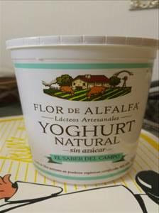 Yogurth de Flor Alfalfa