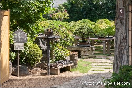 Jardines de bonsais en Omiya