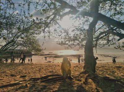 Pantai Pasir Putih, Pangandaran